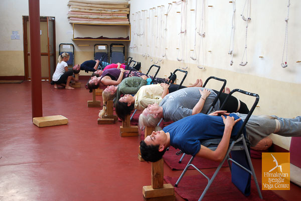 9-Day Intensive Yoga Course, Dharamshala, India